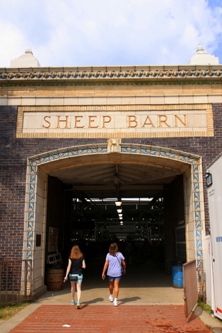 Iowa State Fair Sheep Barn